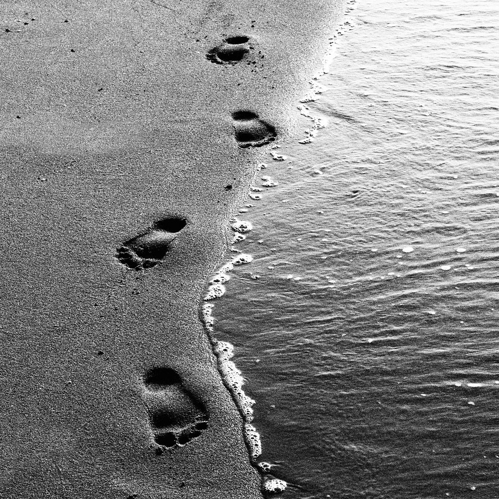 Take nothing leave only your footprints.